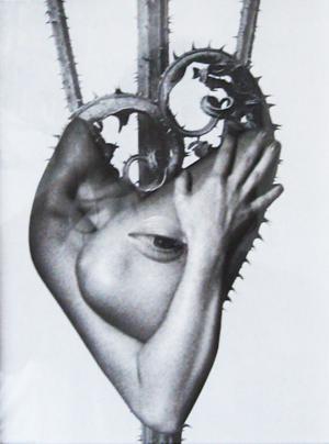 Zelan-collage-22